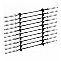 Morgan 10 Tier Barbell Rack